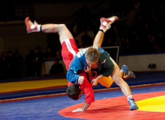 Samboçularımız dünya birinciliyini 6 medalla başa vurdular